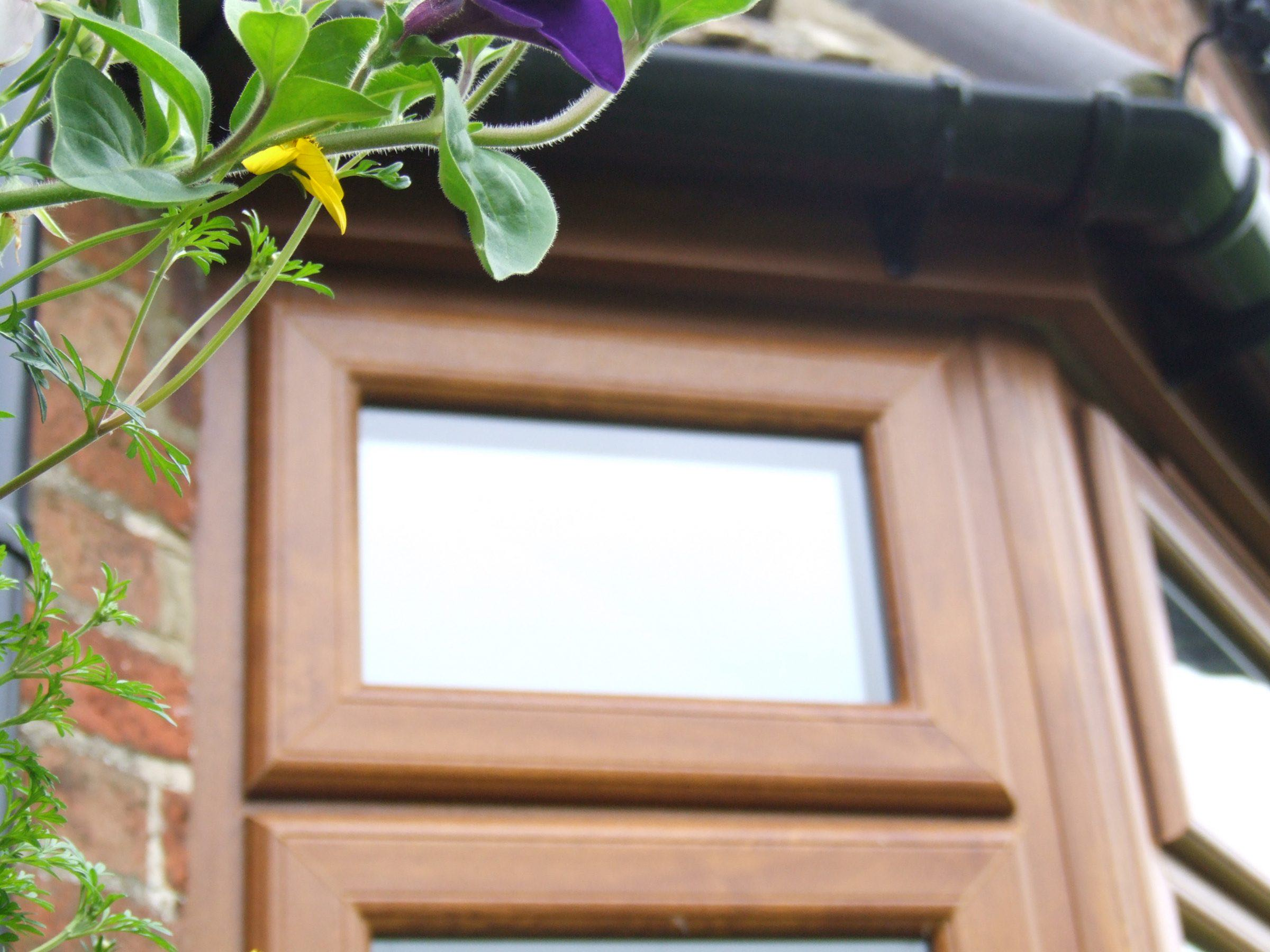 Wooden Double Glazed Windows Cost Hampshire